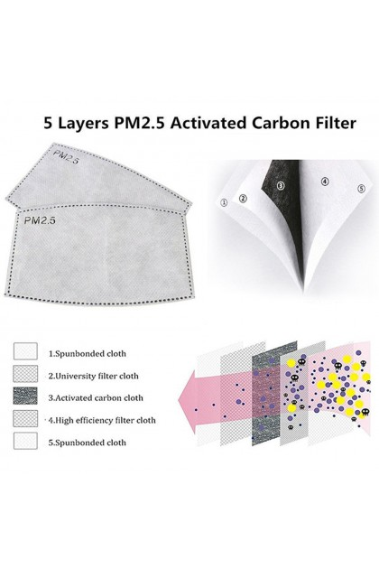 Kid PM2.5 Activated Carbon 5-Layer Safety Mask Filter Insert 儿童口罩滤片PM2.5过滤片