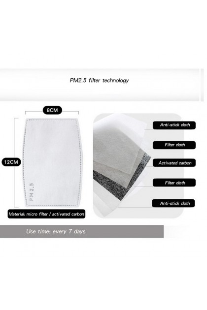 Adult Cotton Face Mask with Filter Pocket Washable Reusable + 2pcs filter 成人纯棉口罩+2滤片